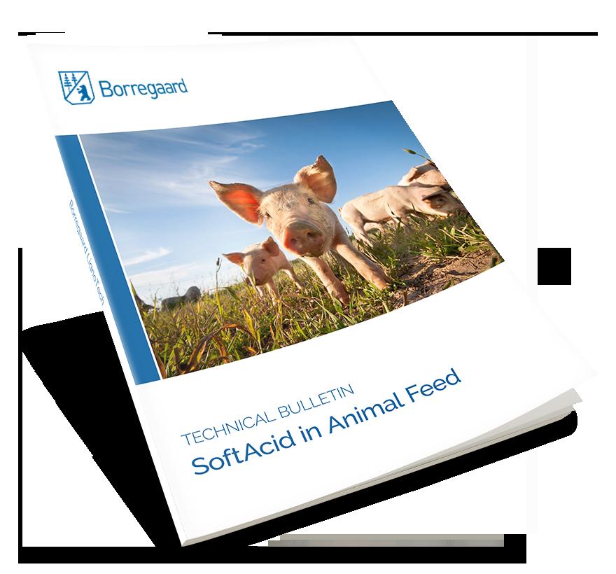 SoftAcid_-_Animal_Feed.png
